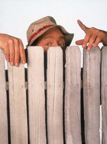 Wilson-home-improvement-tv-show-30858877-372-500